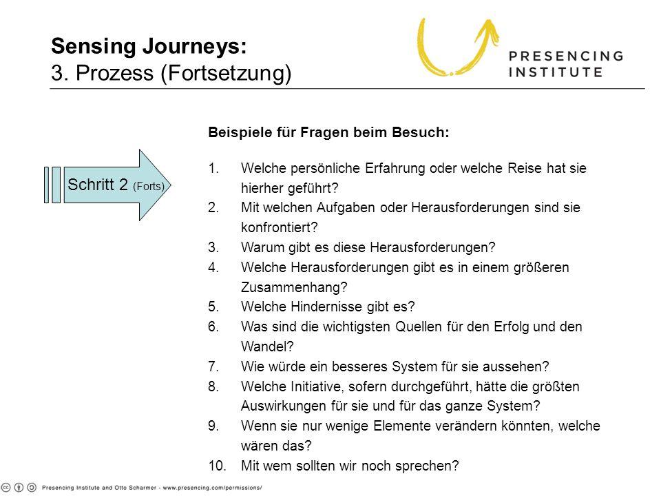 3. Proc (cont. Beispiele für Fragen beim Besuch: 1.Welche persönliche Erfahrung oder welche Reise hat sie hierher geführt? 2.Mit welchen Aufgaben oder