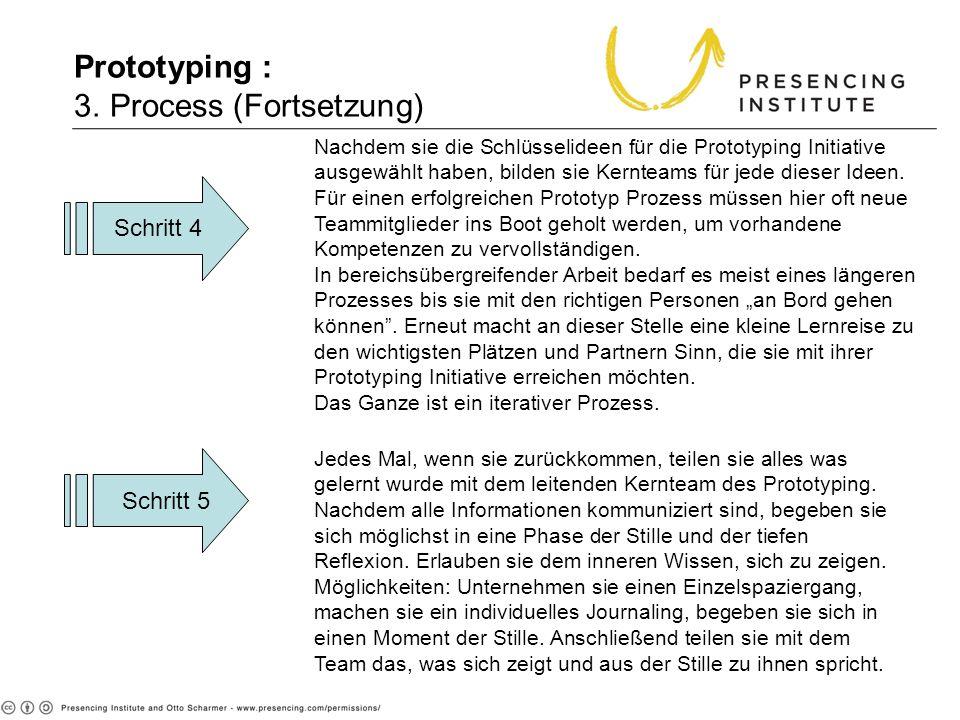 Prototyping : 3. Process (Fortsetzung) Schritt 4 Schritt 5 Nachdem sie die Schlüsselideen für die Prototyping Initiative ausgewählt haben, bilden sie