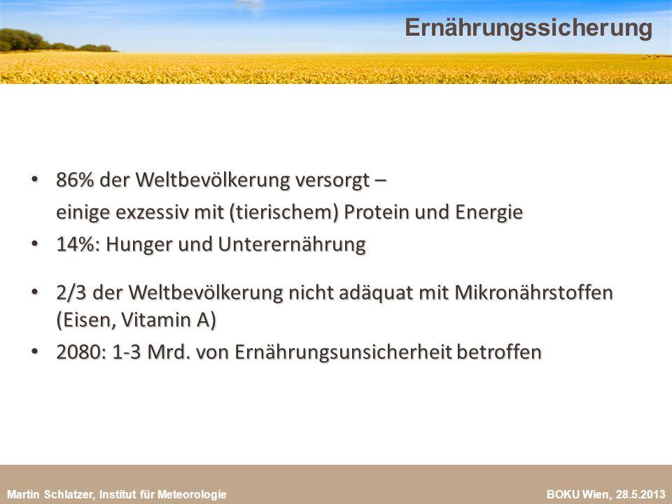 Martin Schlatzer, Institut für Meteorologie BOKU Wien, 28.5.2013 Ernährungssicherung 19 86% der Weltbevölkerung versorgt – 86% der Weltbevölkerung ver