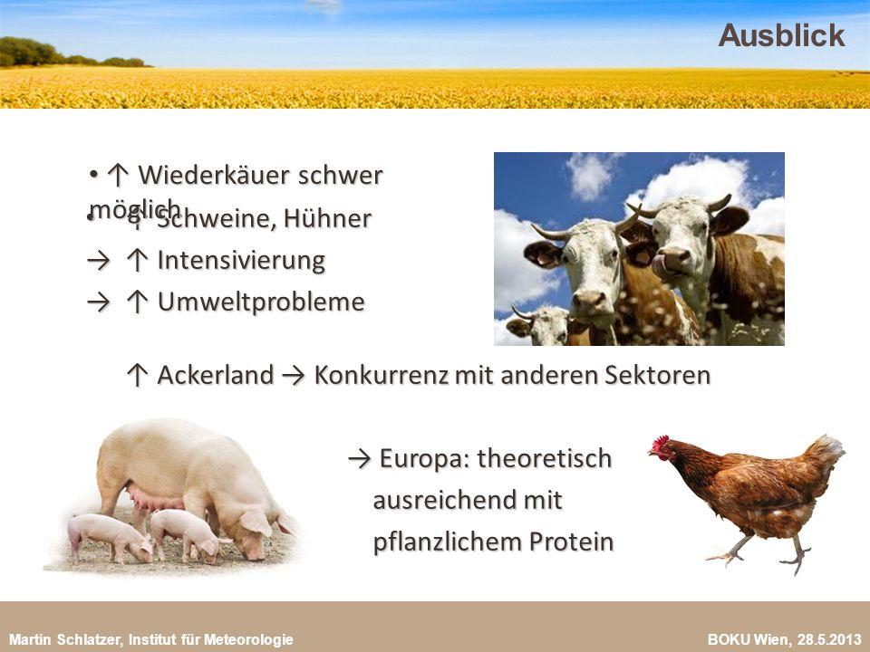 Martin Schlatzer, Institut für Meteorologie BOKU Wien, 28.5.2013 Ausblick 23 Wiederkäuer nicht möglich Wiederkäuer nicht möglich Schweine, Hühner Schw