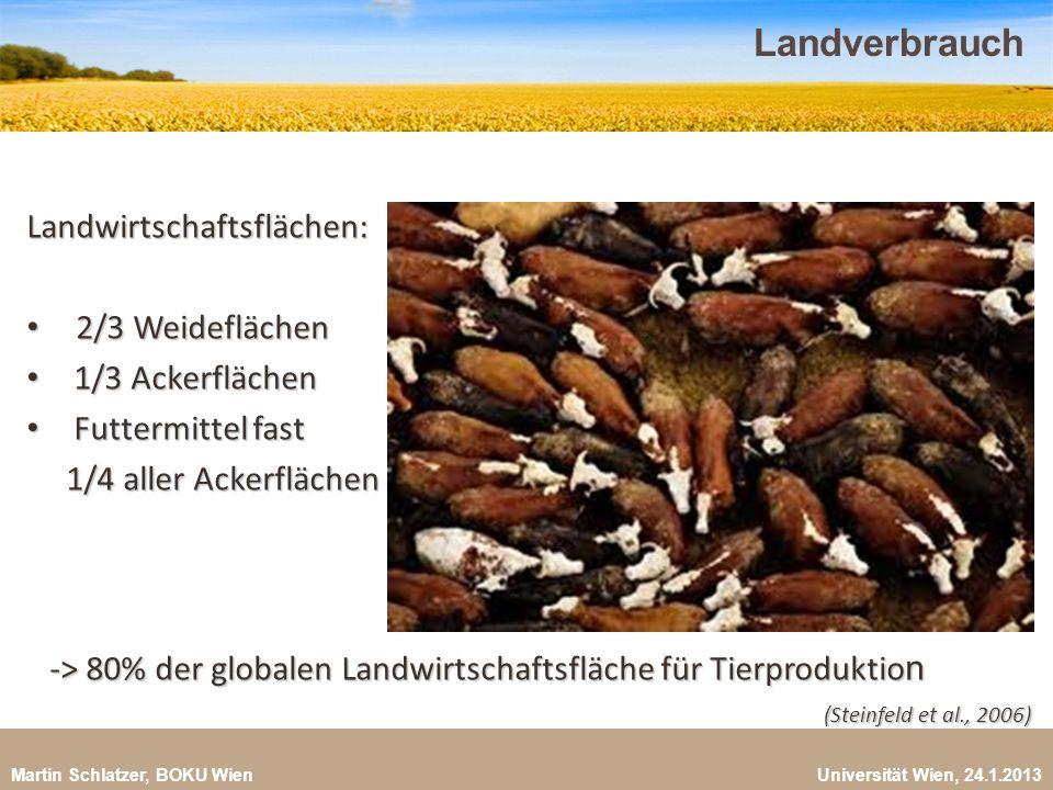 Martin Schlatzer, BOKU Wien Universität Wien, 24.1.2013 Landverbrauch 36 Landwirtschaftsflächen: 2/3 Weideflächen 2/3 Weideflächen 1/3 Ackerflächen 1/