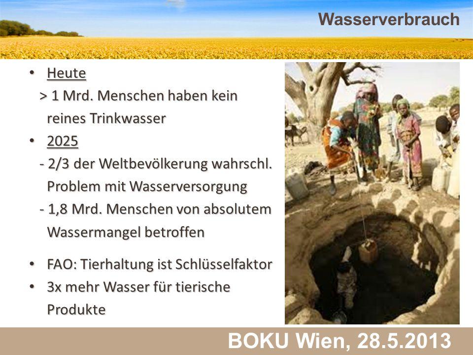 Martin Schlatzer, Institut für Meteorologie BOKU Wien, 28.5.2013 Wasserverbrauch 37 Heute Heute > 1 Mrd. Menschen haben kein > 1 Mrd. Menschen haben k