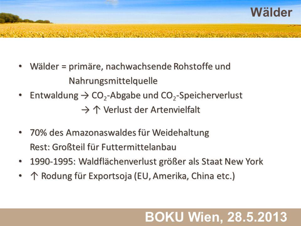 Martin Schlatzer, Institut für Meteorologie BOKU Wien, 28.5.2013 Wälder 39 Wälder = primäre, nachwachsende Rohstoffe und Wälder = primäre, nachwachsen