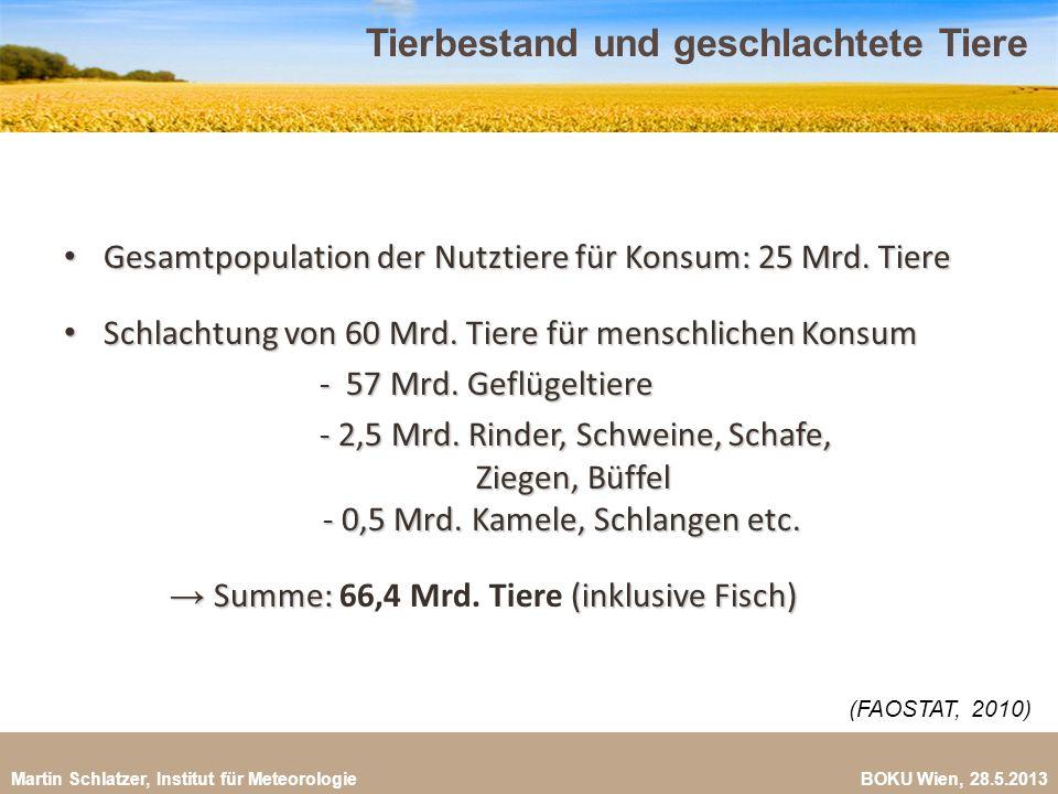 Martin Schlatzer, Institut für Meteorologie BOKU Wien, 28.5.2013 Rahmenfaktoren für die Ernährungssicherung 18 Bis 2050: +2,2 Milliarden Menschen Bis 2050: +2,2 Milliarden Menschen Steigerung der Nahrungsmittelproduktion um 70% nötig Steigerung der Nahrungsmittelproduktion um 70% nötig Fleischproduktion verdoppelt sich bis 2050 Fleischproduktion verdoppelt sich bis 2050 Limitierende Faktoren: Landverfügbarkeit (Konkurrenz), Limitierende Faktoren: Landverfügbarkeit (Konkurrenz), Erträge, Phosphor, Energiekonkurrenz, Erträge, Phosphor, Energiekonkurrenz, Humusabbau, Landdegradierung, Schadstoffeinträge, lokale Humusabbau, Landdegradierung, Schadstoffeinträge, lokale Wasserengpässe, Preisvolatilität, Landspekulation, Wasserengpässe, Preisvolatilität, Landspekulation, Land Grabbing, veränderte Ernährungsgewohnheiten und Klimawandel Land Grabbing, veränderte Ernährungsgewohnheiten und Klimawandel