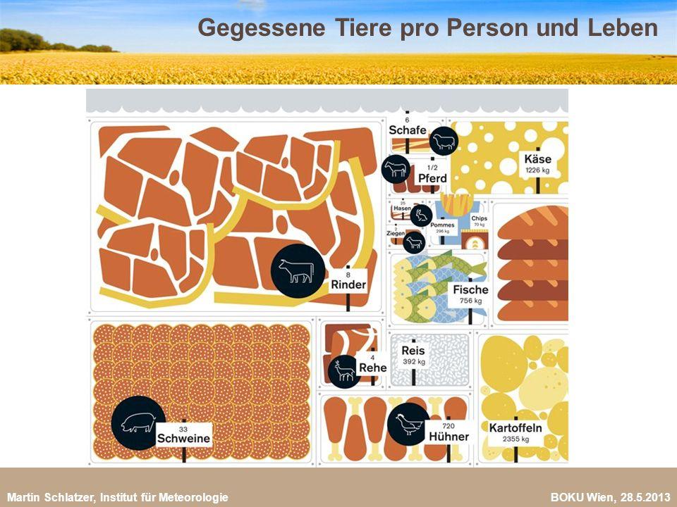 Martin Schlatzer, Institut für Meteorologie BOKU Wien, 28.5.2013 Fleischkonsum pro Person und Jahr 9 (FAO, 2009) Anteil VegetarierInnen weltweit: ca.