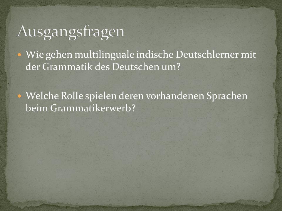 Wie gehen multilinguale indische Deutschlerner mit der Grammatik des Deutschen um? Welche Rolle spielen deren vorhandenen Sprachen beim Grammatikerwer