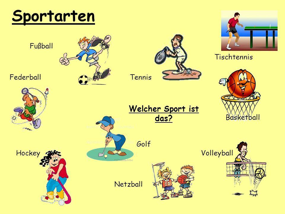 Sportarten Welcher Sport ist das? Netzball Basketball Fußball Hockey FederballTennis Golf Tischtennis Volleyball