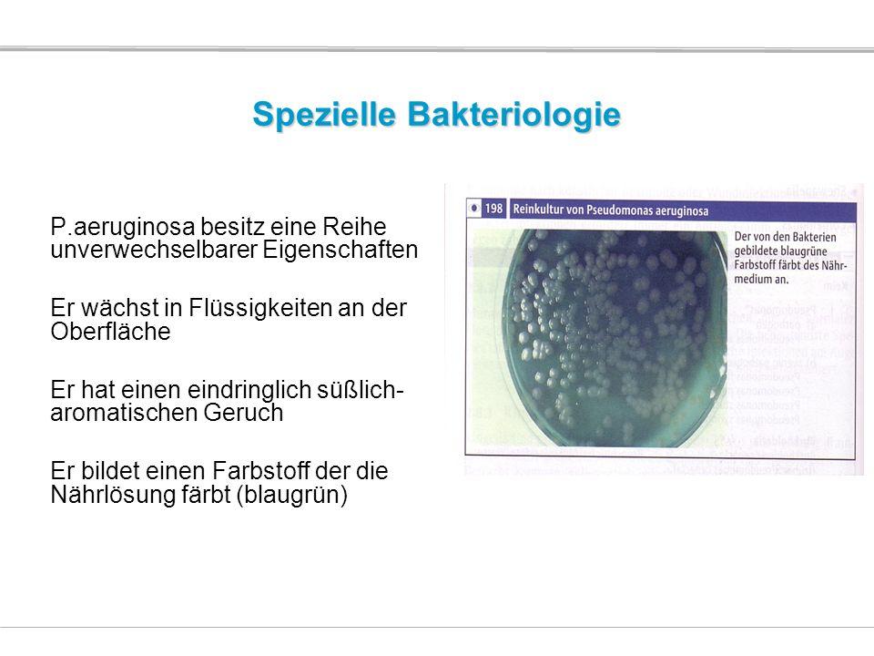 Spezielle Bakteriologie P.aeruginosa besitz eine Reihe unverwechselbarer Eigenschaften Er wächst in Flüssigkeiten an der Oberfläche Er hat einen eindr