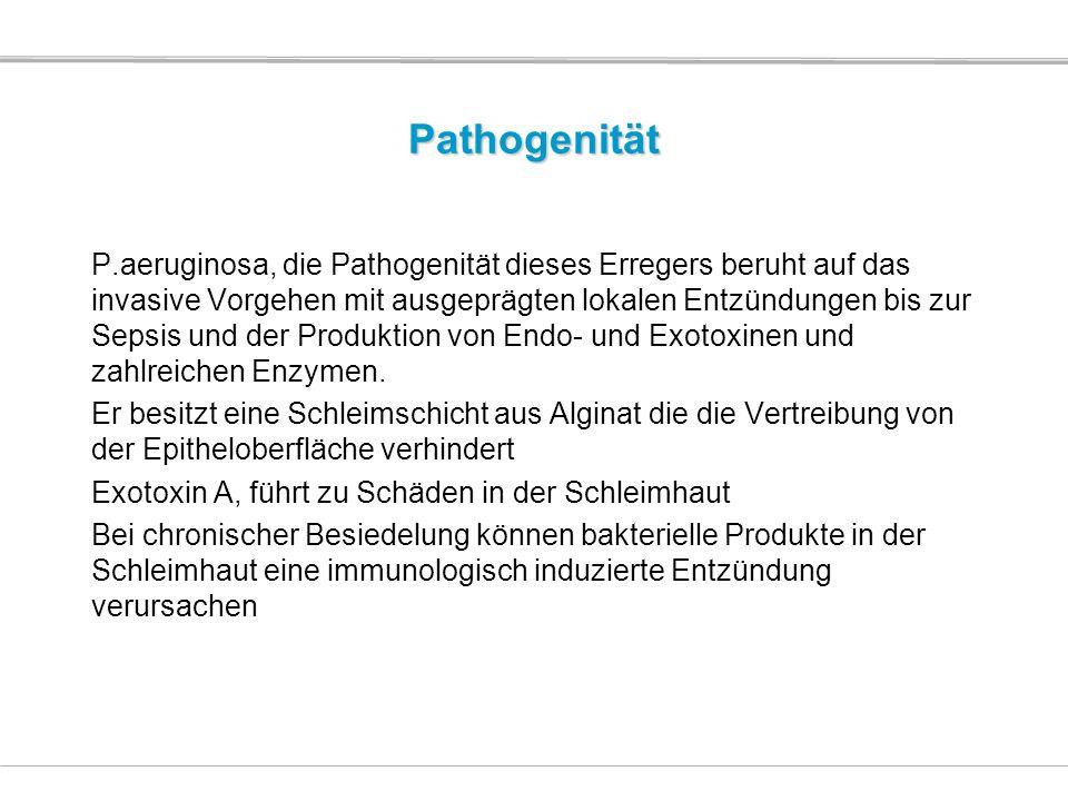 Pathogenität P.aeruginosa, die Pathogenität dieses Erregers beruht auf das invasive Vorgehen mit ausgeprägten lokalen Entzündungen bis zur Sepsis und