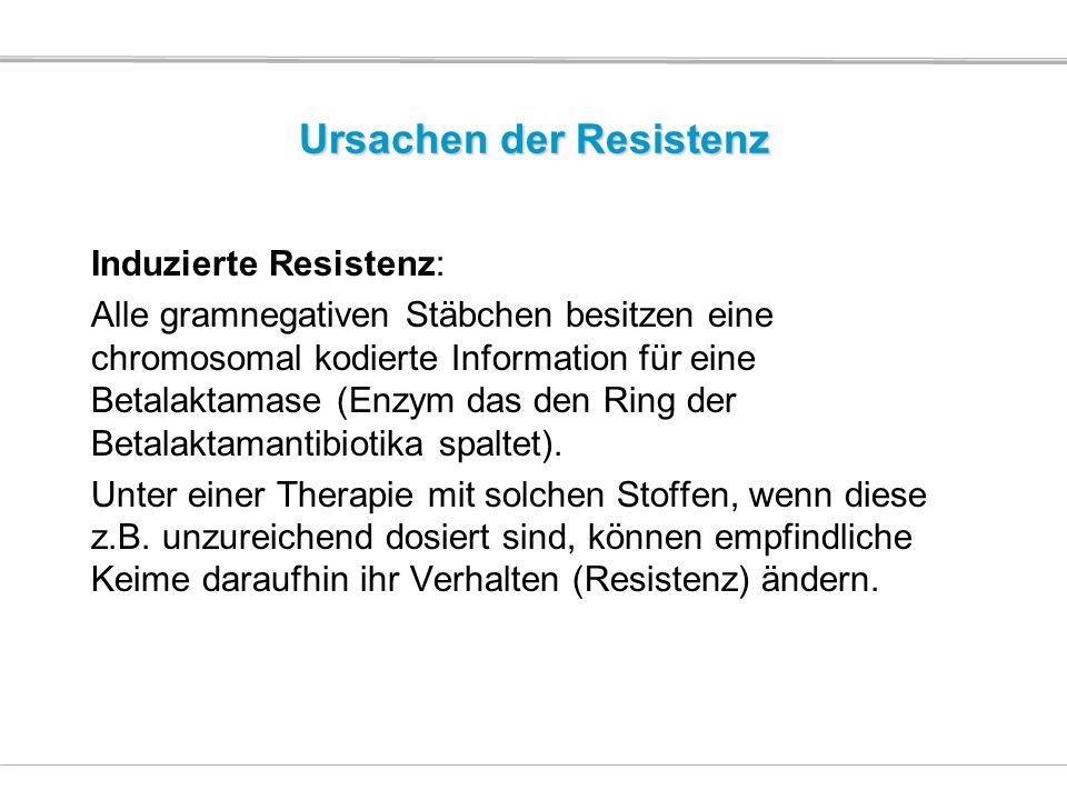Ursachen der Resistenz Induzierte Resistenz: Alle gramnegativen Stäbchen besitzen eine chromosomal kodierte Information für eine Betalaktamase (Enzym
