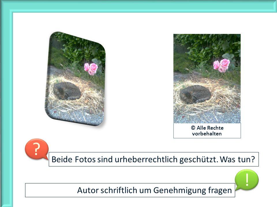 © Alle Rechte vorbehalten Autor schriftlich um Genehmigung fragen Beide Fotos sind urheberrechtlich geschützt. Was tun? ? ? ! !