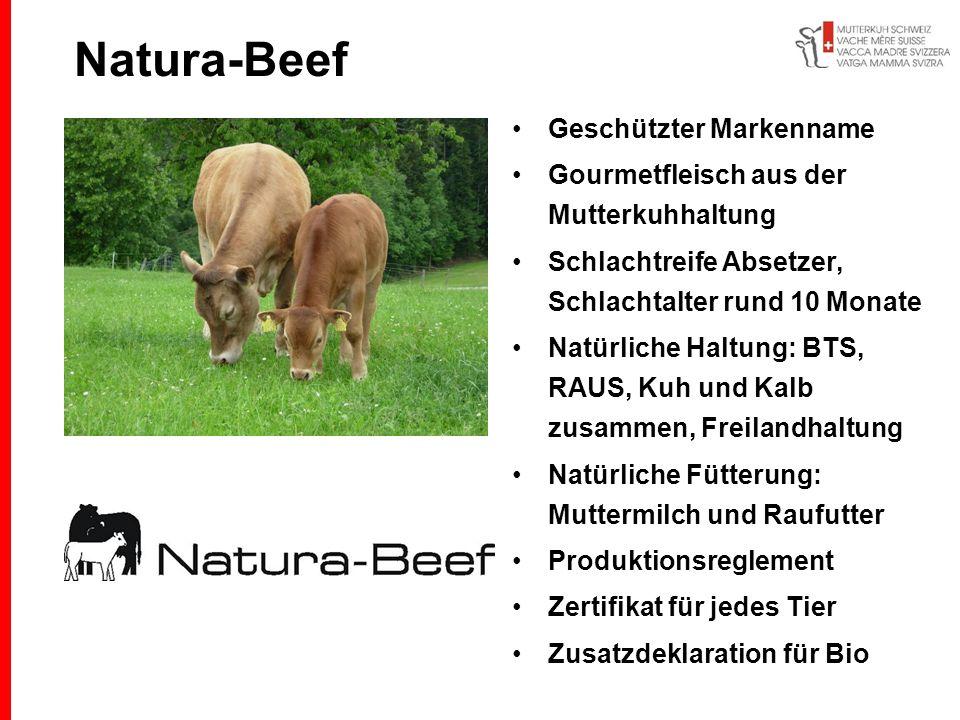 Natura-Beef Geschützter Markenname Gourmetfleisch aus der Mutterkuhhaltung Schlachtreife Absetzer, Schlachtalter rund 10 Monate Natürliche Haltung: BT