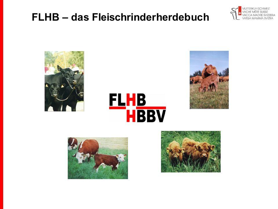 FLHB – das Fleischrinderherdebuch