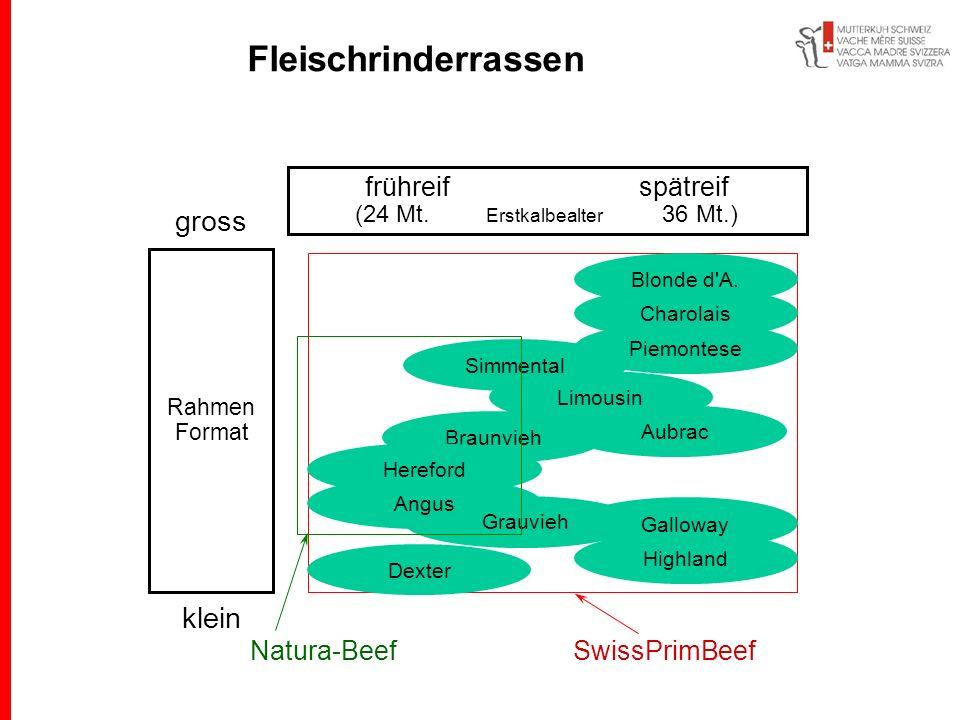 frühreif spätreif (24 Mt. Erstkalbealter 36 Mt.) gross Rahmen Format klein SwissPrimBeefNatura-Beef Highland Galloway Braunvieh Limousin Charolais Blo