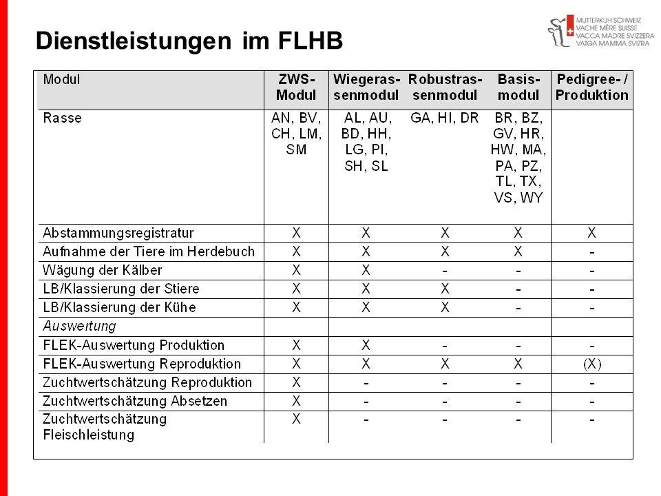 Dienstleistungen im FLHB