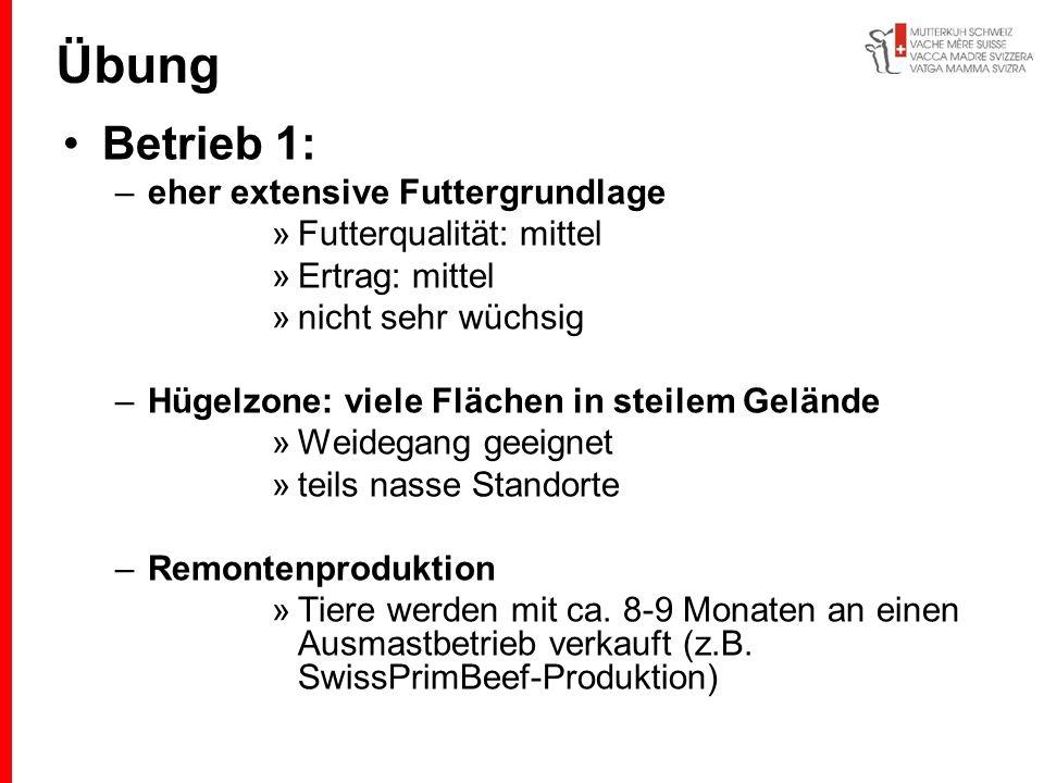 Betrieb 1: –eher extensive Futtergrundlage »Futterqualität: mittel »Ertrag: mittel »nicht sehr wüchsig –Hügelzone: viele Flächen in steilem Gelände »W