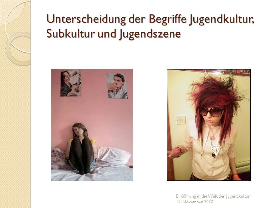 Unterscheidung der Begriffe Jugendkultur, Subkultur und Jugendszene Einführung in die Welt der Jugendkultur 12. November 2010