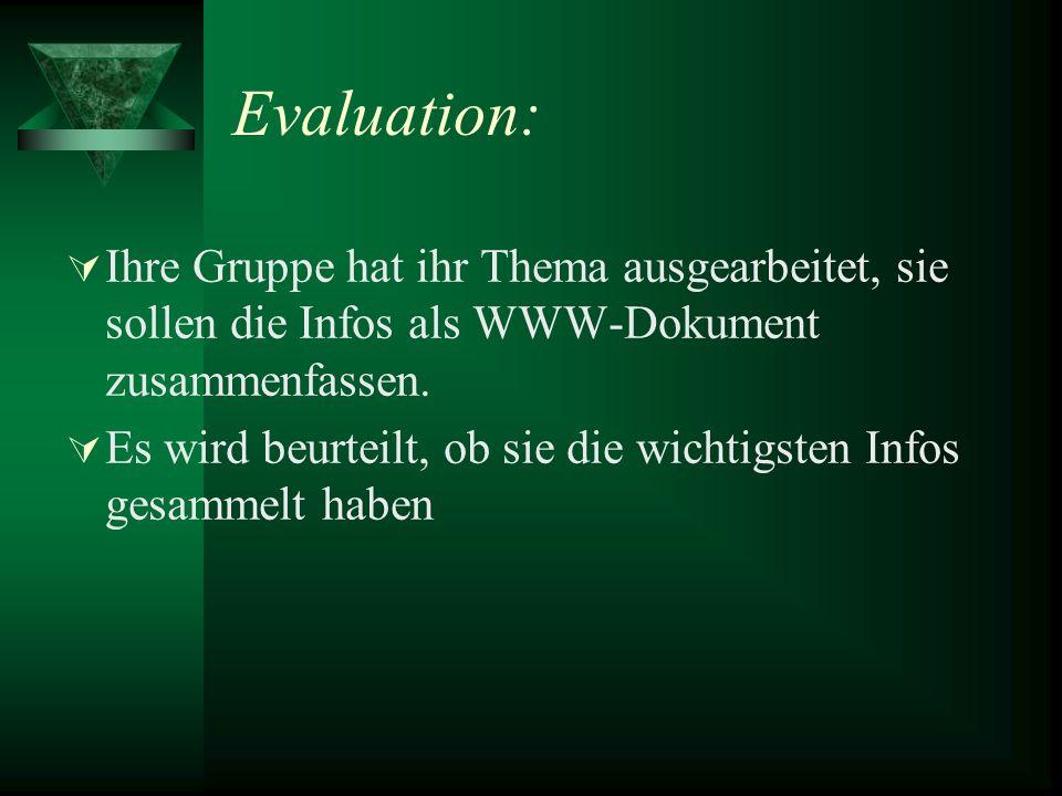 Evaluation: Ihre Gruppe hat ihr Thema ausgearbeitet, sie sollen die Infos als WWW-Dokument zusammenfassen.