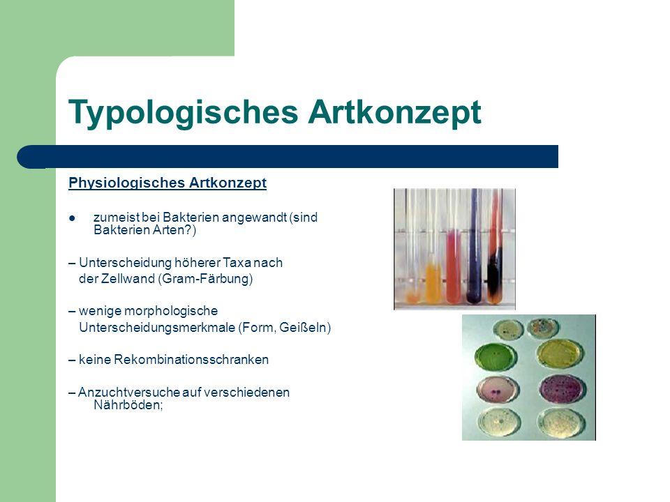 Typologisches Artkonzept Physiologisches Artkonzept zumeist bei Bakterien angewandt (sind Bakterien Arten?) – Unterscheidung höherer Taxa nach der Zel