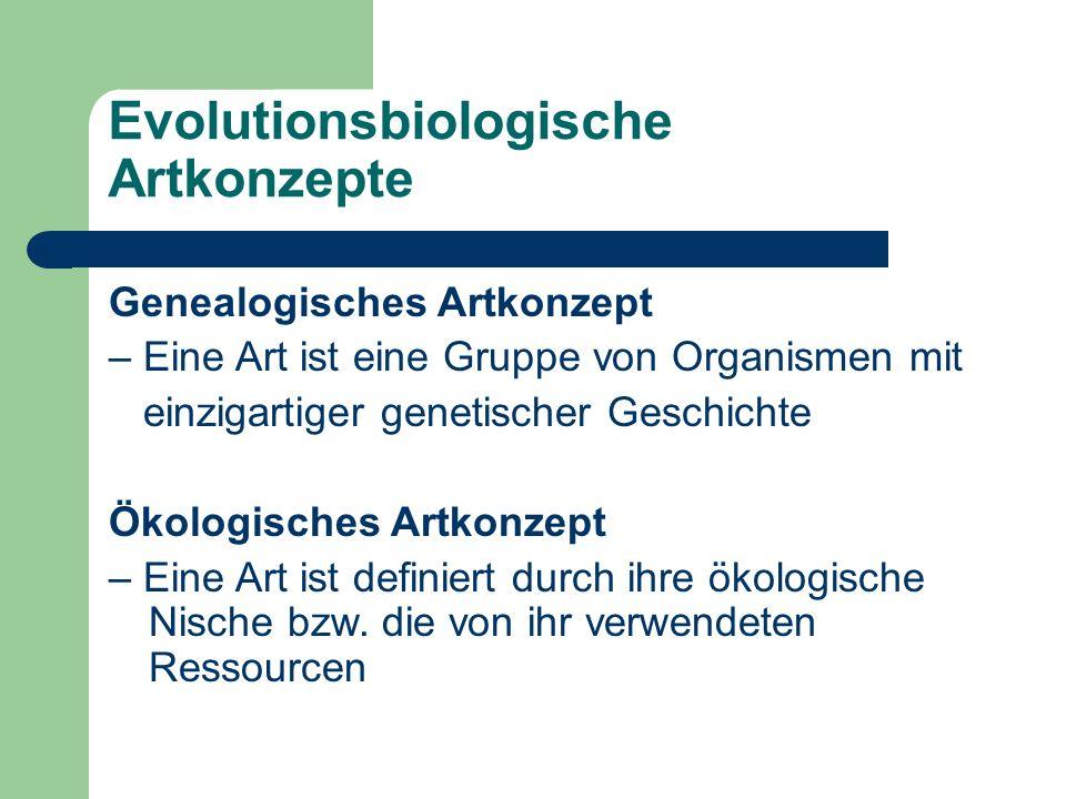 Evolutionsbiologische Artkonzepte Genealogisches Artkonzept – Eine Art ist eine Gruppe von Organismen mit einzigartiger genetischer Geschichte Ökologisches Artkonzept – Eine Art ist definiert durch ihre ökologische Nische bzw.