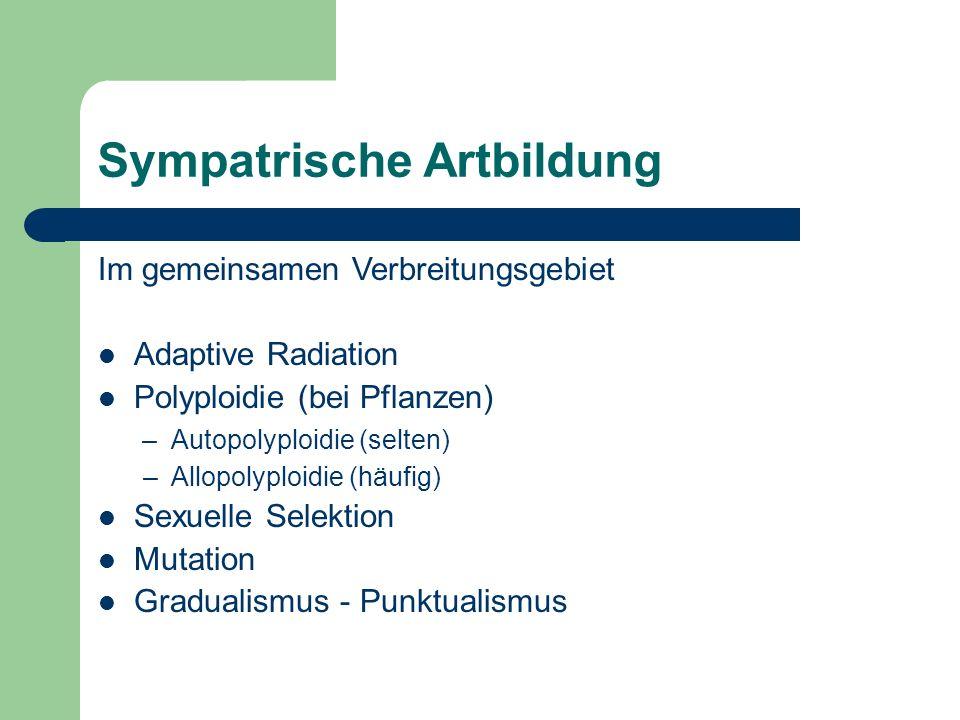 Sympatrische Artbildung Im gemeinsamen Verbreitungsgebiet Adaptive Radiation Polyploidie (bei Pflanzen) – Autopolyploidie (selten) – Allopolyploidie (häufig) Sexuelle Selektion Mutation Gradualismus - Punktualismus