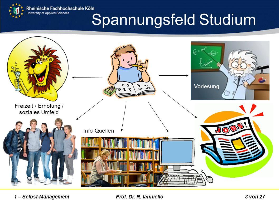 Prof. Dr. R. Ianniello3 von 271 – Selbst-Management Spannungsfeld Studium Vorlesung Info-Quellen Freizeit / Erholung / soziales Umfeld