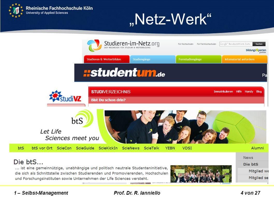 Prof. Dr. R. Ianniello4 von 271 – Selbst-Management Netz-Werk