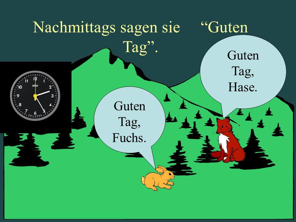 Nachmittags sagen sie Guten Tag. Guten Tag, Fuchs. Guten Tag, Hase.