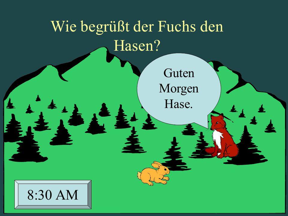 Guten Morgen Hase. 8:30 AM Wie begrüßt der Fuchs den Hasen?