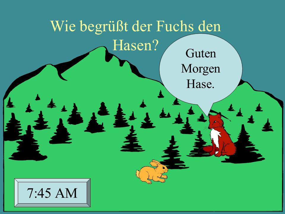 Wie begrüßt der Fuchs den Hasen? Guten Morgen Hase. 7:45 AM