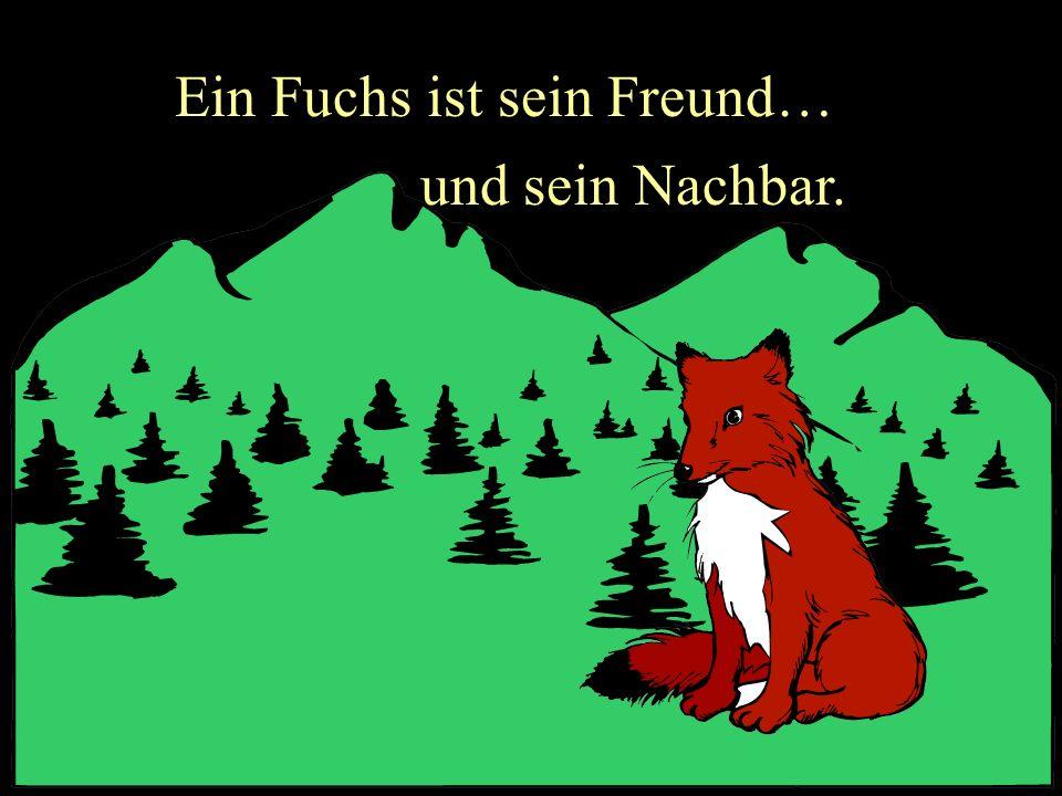 Ein Fuchs ist sein Freund… und sein Nachbar.