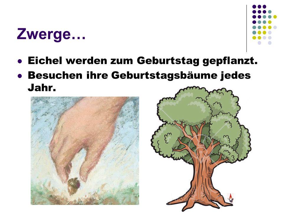 Zwerge… Eichel werden zum Geburtstag gepflanzt. Besuchen ihre Geburtstagsbäume jedes Jahr.