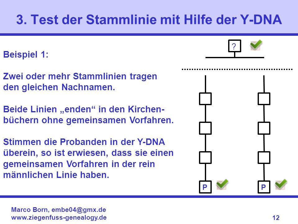 Marco Born, embe04@gmx.de www.ziegenfuss-genealogy.de 12 3. Test der Stammlinie mit Hilfe der Y-DNA ? Beispiel 1: Zwei oder mehr Stammlinien tragen de