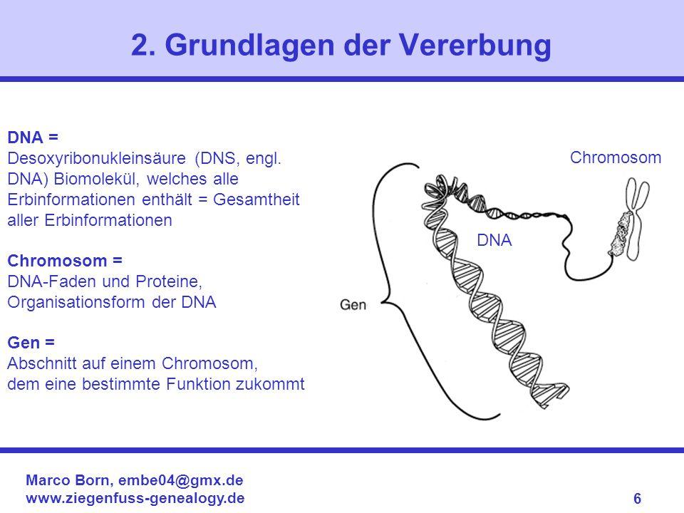 Marco Born, embe04@gmx.de www.ziegenfuss-genealogy.de 6 2. Grundlagen der Vererbung DNA = Desoxyribonukleinsäure (DNS, engl. DNA) Biomolekül, welches