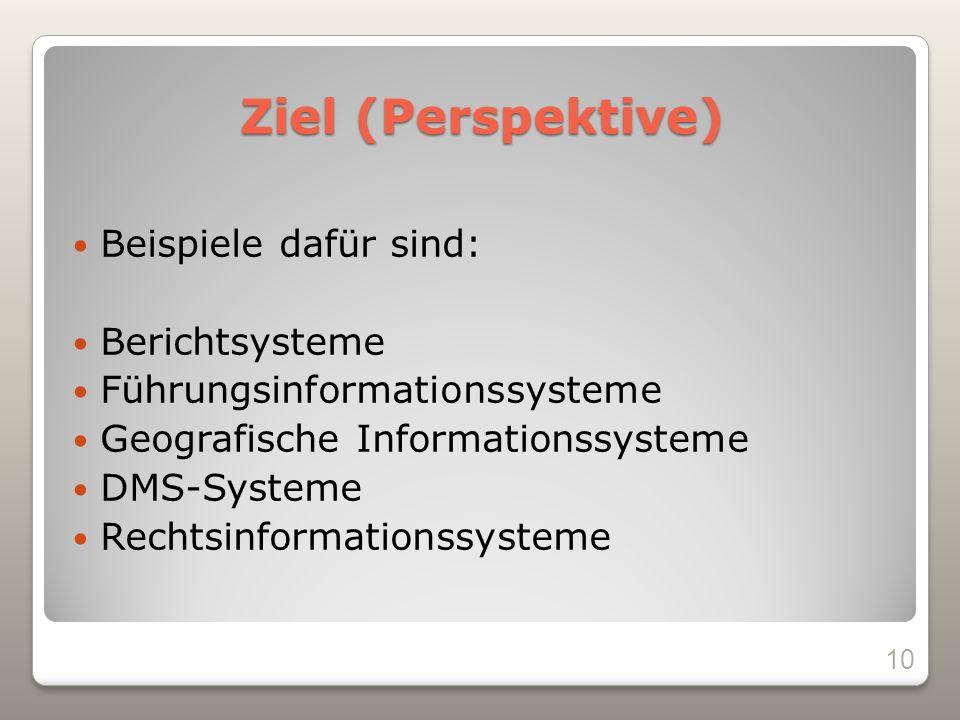 Ziel (Perspektive) Beispiele dafür sind: Berichtsysteme Führungsinformationssysteme Geografische Informationssysteme DMS-Systeme Rechtsinformationssysteme 10