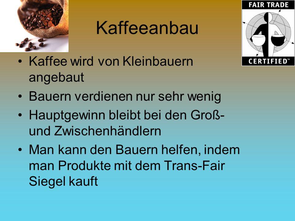 Kaffeeanbau Kaffee wird von Kleinbauern angebaut Bauern verdienen nur sehr wenig Hauptgewinn bleibt bei den Groß- und Zwischenhändlern Man kann den Ba