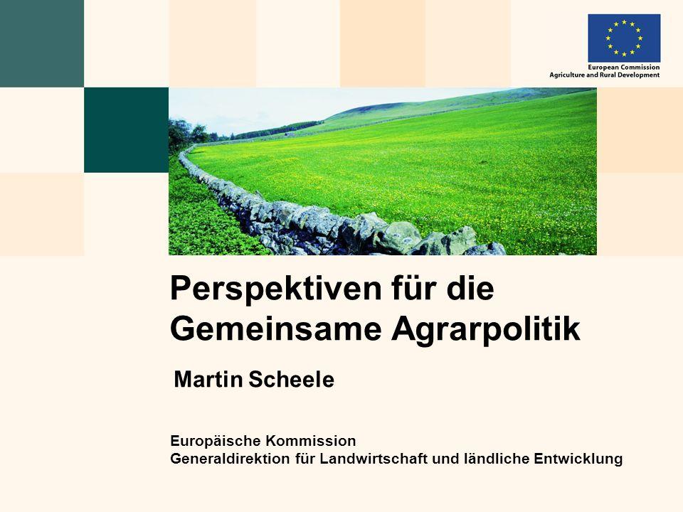 Europäische Kommission Generaldirektion für Landwirtschaft und ländliche Entwicklung Perspektiven für die Gemeinsame Agrarpolitik Martin Scheele