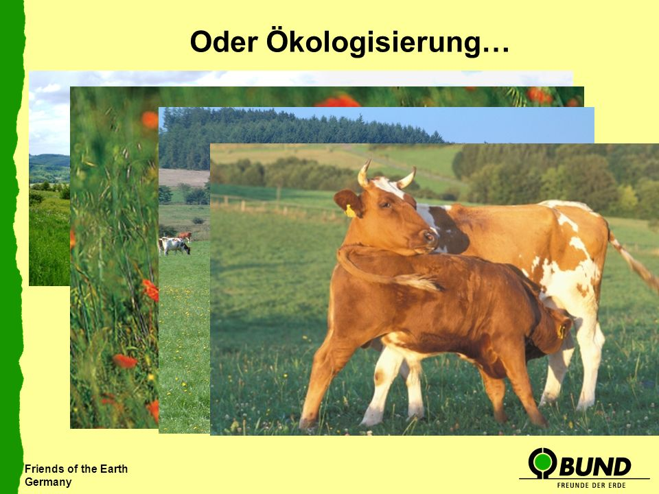 Friends of the Earth Germany Oder Ökologisierung…