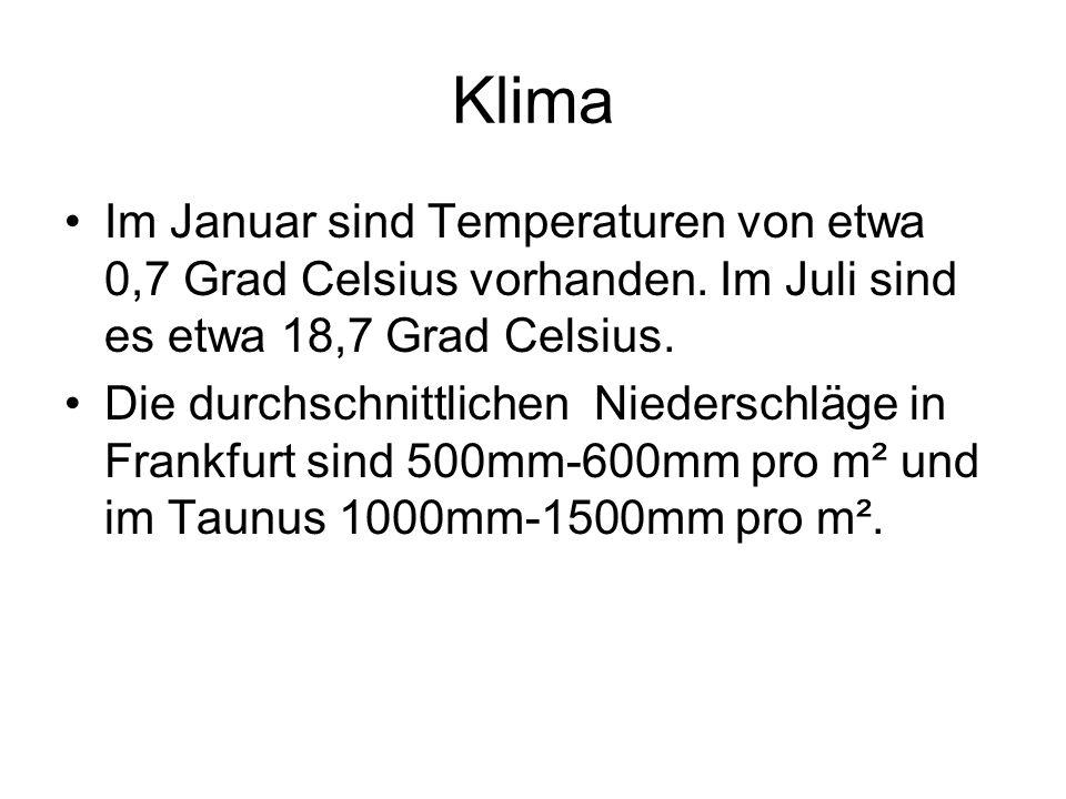 Klima Im Januar sind Temperaturen von etwa 0,7 Grad Celsius vorhanden.