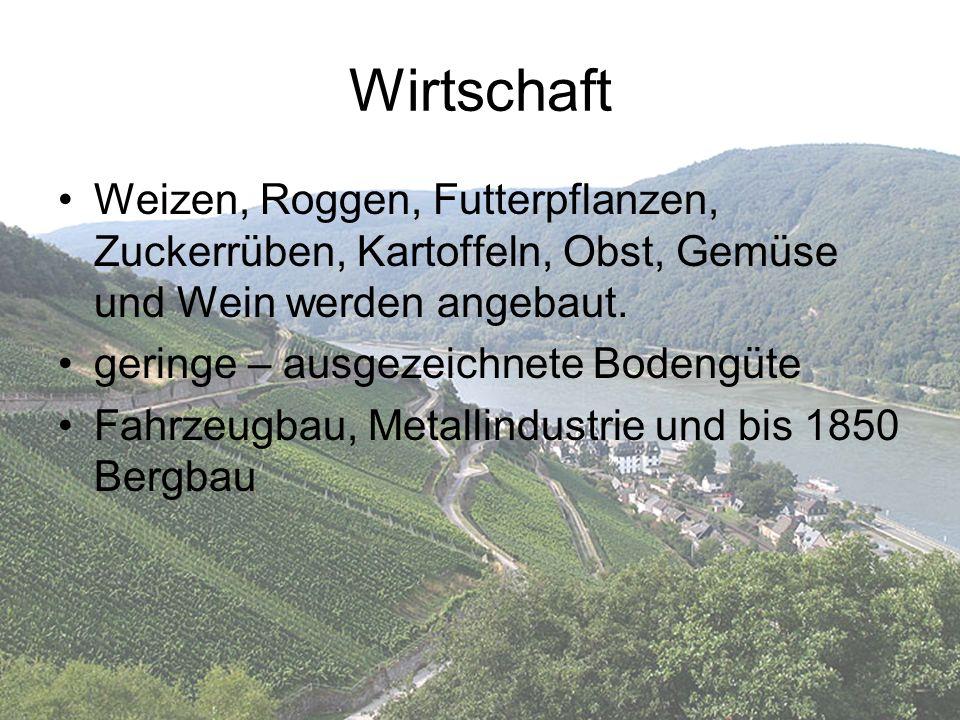 Wirtschaft Weizen, Roggen, Futterpflanzen, Zuckerrüben, Kartoffeln, Obst, Gemüse und Wein werden angebaut.
