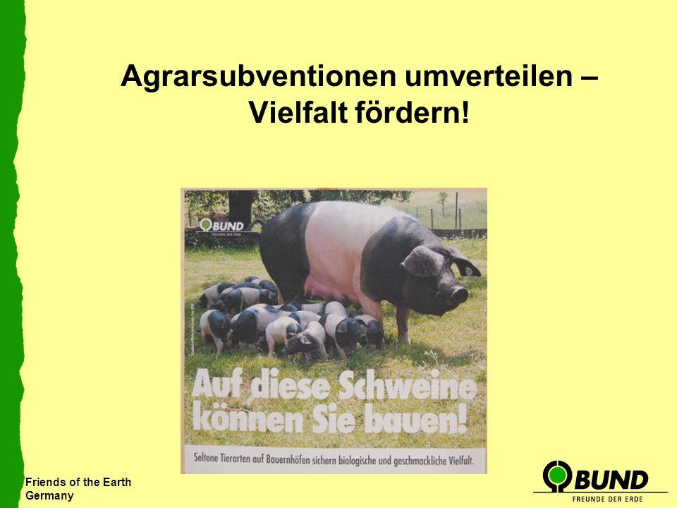 Friends of the Earth Germany Agrarsubventionen umverteilen – Vielfalt fördern!