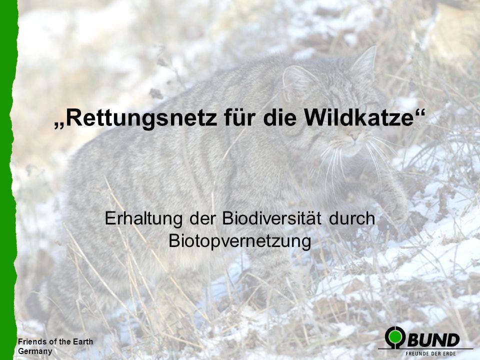 Friends of the Earth Germany Rettungsnetz für die Wildkatze Erhaltung der Biodiversität durch Biotopvernetzung Friends of the Earth Germany