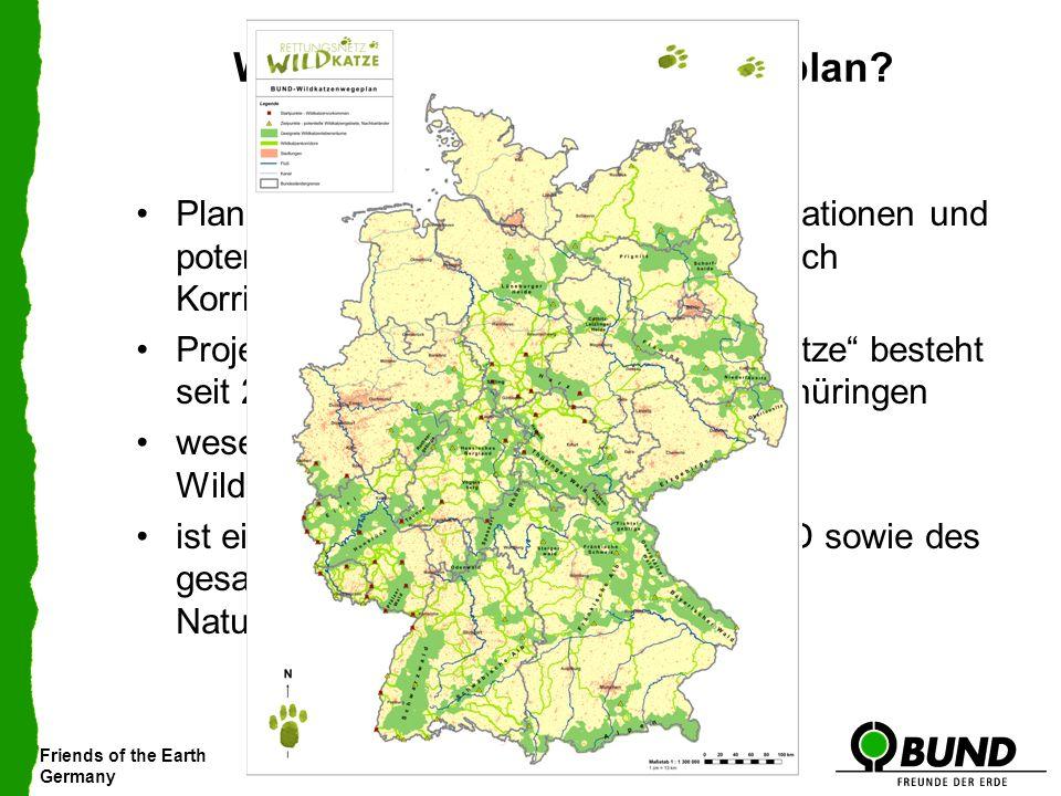 Friends of the Earth Germany Was ist der Wildkatzenwegeplan? Plan zur Vernetzung bestehender Populationen und potentieller Habitate (Lebensräume) durc