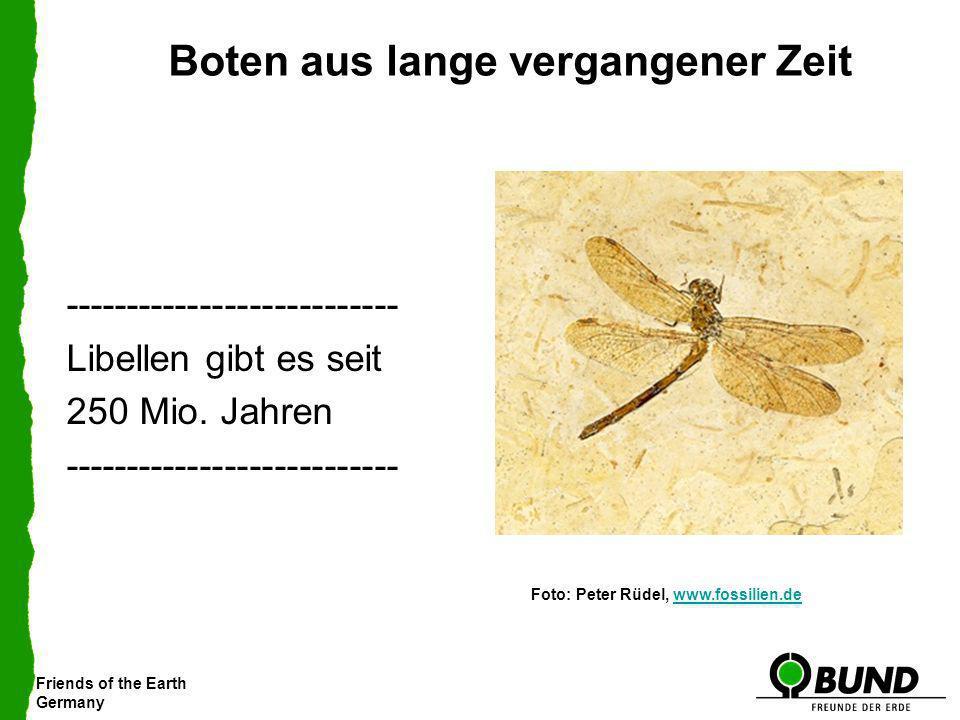 Friends of the Earth Germany Boten aus lange vergangener Zeit --------------------------- Libellen gibt es seit 250 Mio. Jahren ----------------------