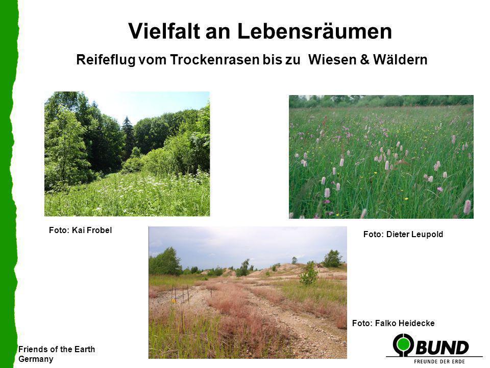Friends of the Earth Germany Vielfalt an Lebensräumen Reifeflug vom Trockenrasen bis zu Wiesen & Wäldern Foto: Falko Heidecke Foto: Dieter Leupold Fot