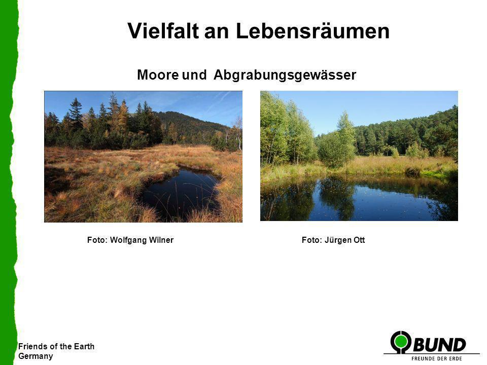 Friends of the Earth Germany Vielfalt an Lebensräumen Moore und Abgrabungsgewässer Foto: Jürgen OttFoto: Wolfgang Wilner