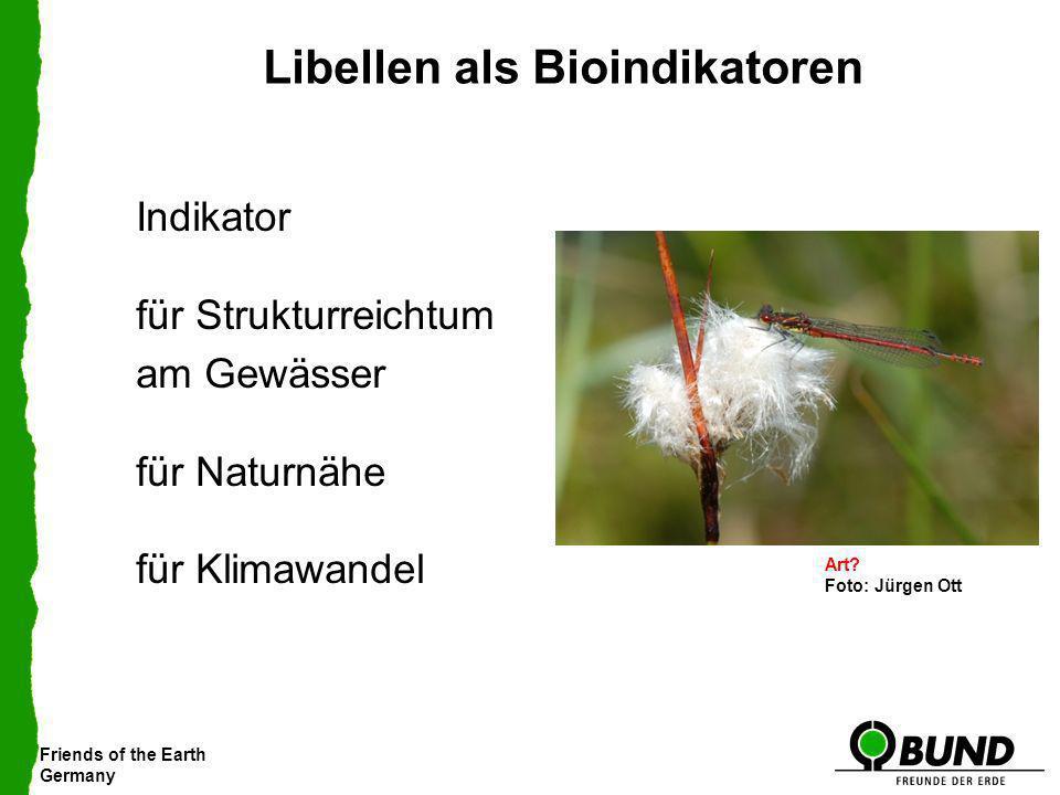 Friends of the Earth Germany Libellen als Bioindikatoren Indikator für Strukturreichtum am Gewässer für Naturnähe für Klimawandel Feuerlibelle Art? Fo