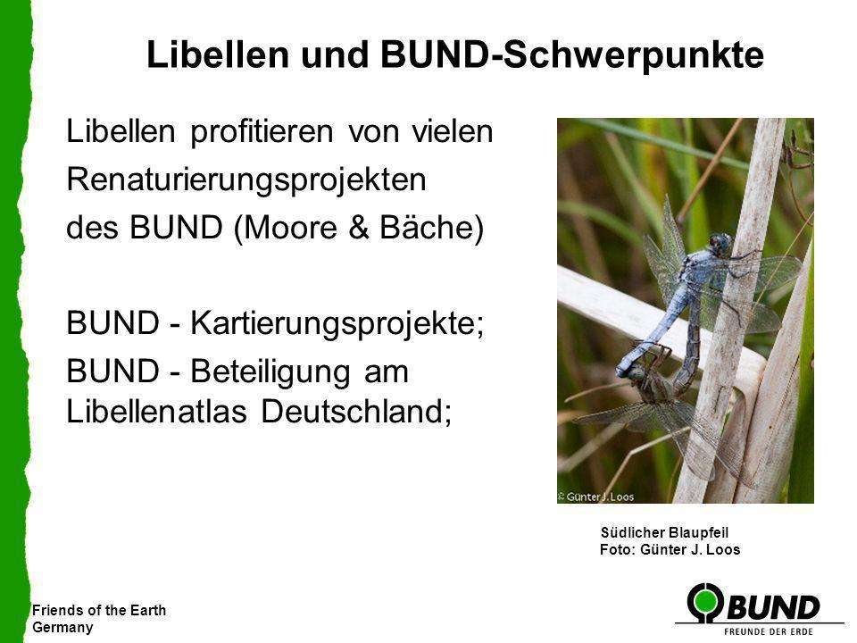 Friends of the Earth Germany Libellen und BUND-Schwerpunkte Libellen profitieren von vielen Renaturierungsprojekten des BUND (Moore & Bäche) BUND - Ka