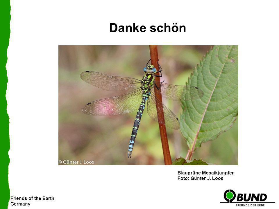 Friends of the Earth Germany Danke schön Kleiner Blaupfeil Südliche Heidelibelle Kleine Binsenjungfer Blaugrüne Mosaikjungfer Foto: Günter J. Loos