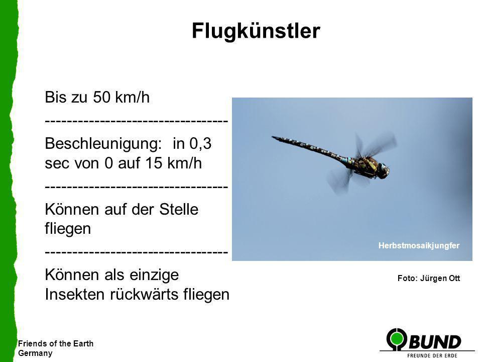 Friends of the Earth Germany Flugkünstler Bis zu 50 km/h ---------------------------------- Beschleunigung: in 0,3 sec von 0 auf 15 km/h -------------